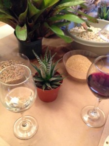 Wine and plants