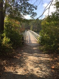 Wooded trail that ends at a wooden bridge. Far in the distance is a covered portion of the bridge