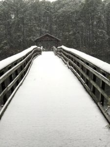 Snow covered wooden bridge, with covered center portion, far shore full of snow covered trees