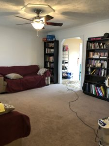 bare open floor in a living room. Bookshelves along one wall, couches along the other walls, a vacuum cleaner cord snaking across the carpet from the far side of the room.